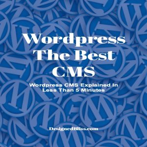Wordpress CMS Explained In Less Than 5 Minutes - WP Nirvana