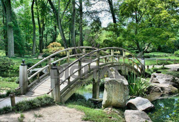 Bridge-010