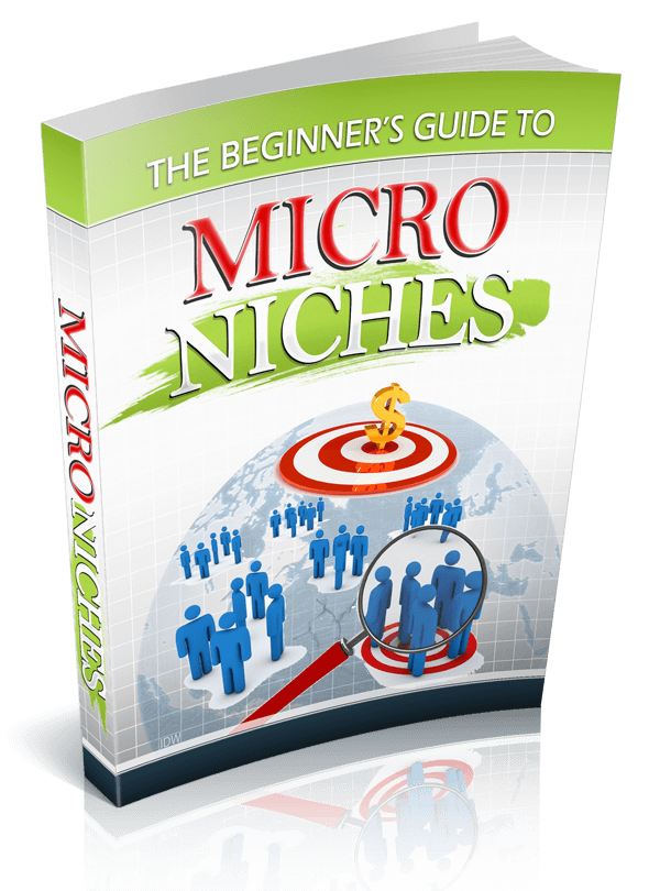 The Beginner's Guide to Micro Niches