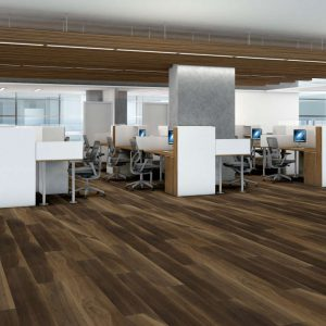 Shaw Floors Intrepid HD Plus