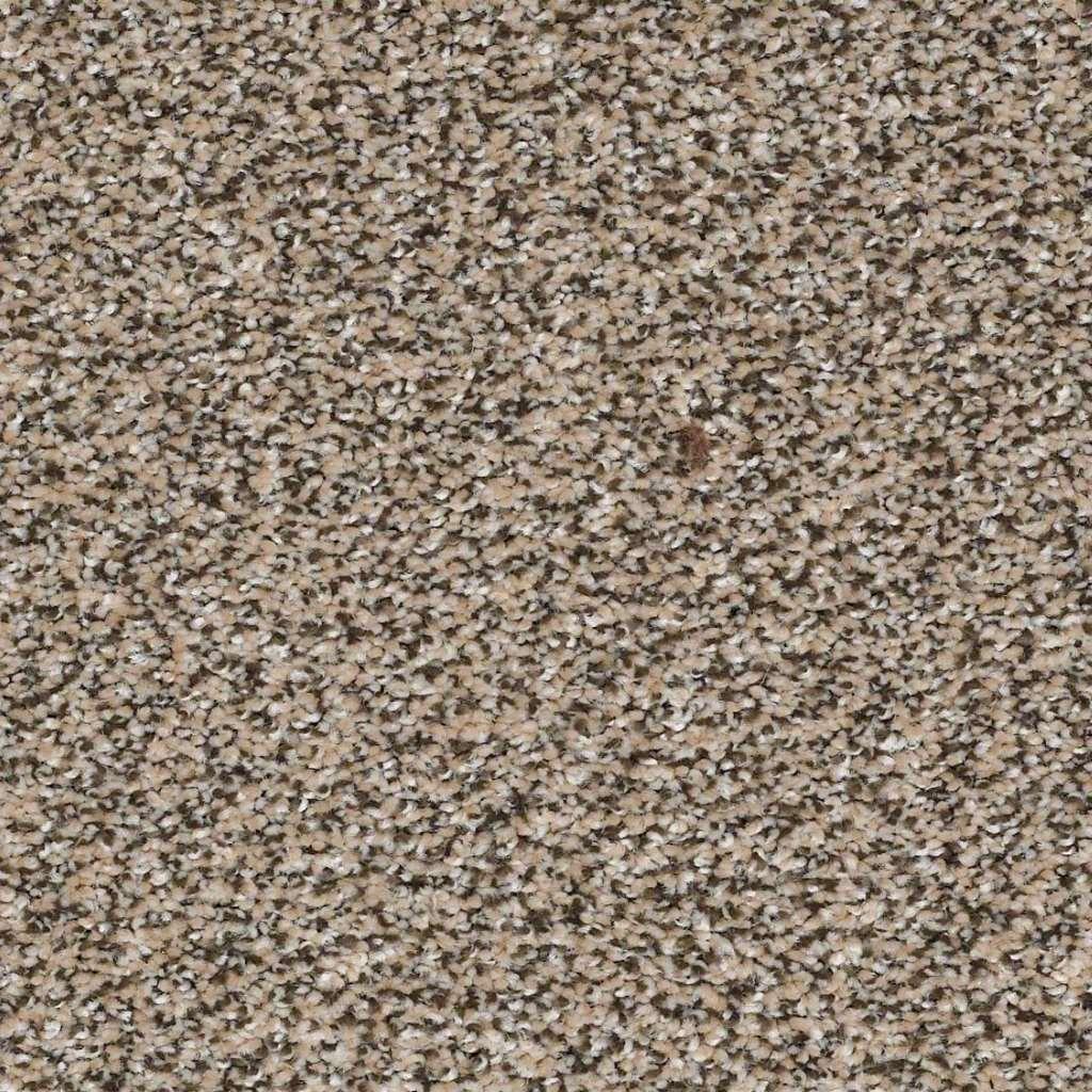 Shaw Floors Carpet Choose Me