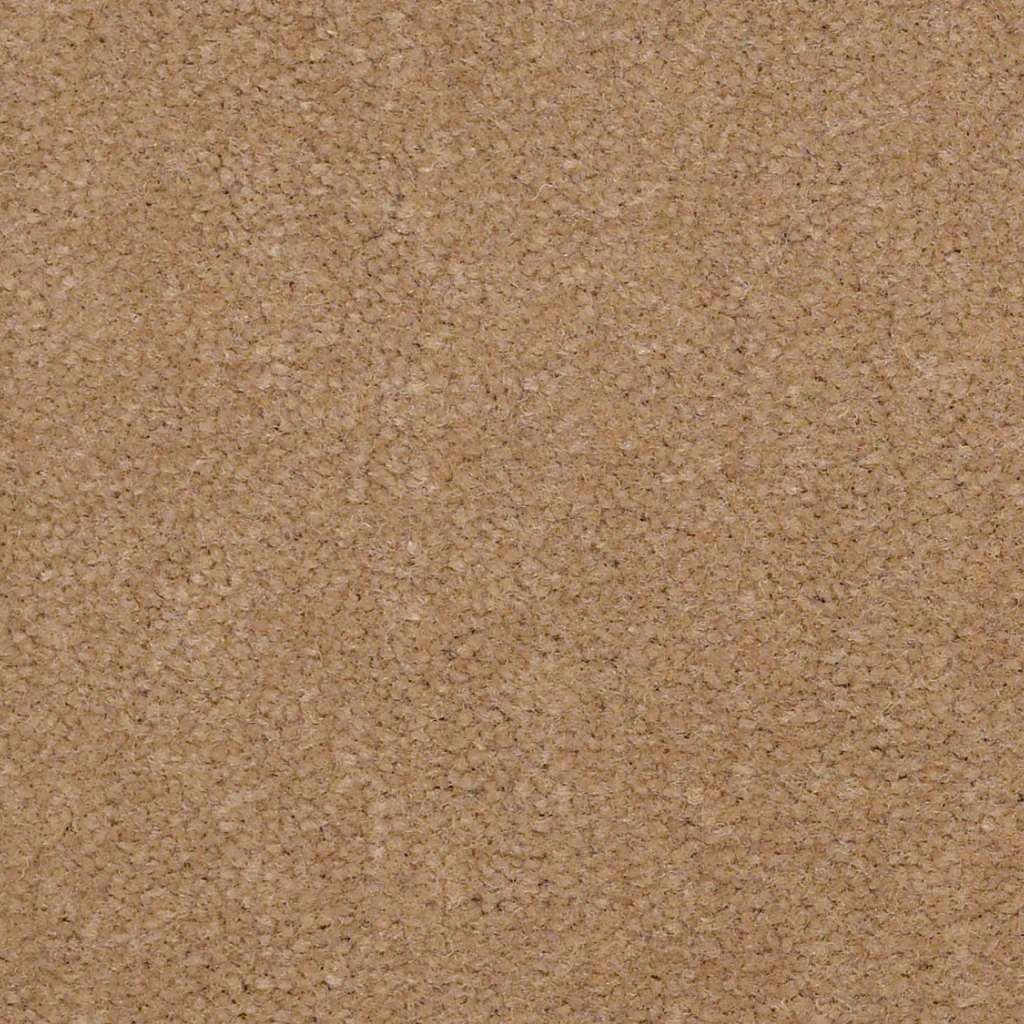 Shaw Floors Carpet Emphatic 36