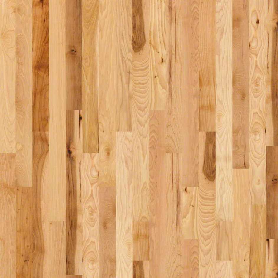 Shaw Floors Hardwood Pioneer Road
