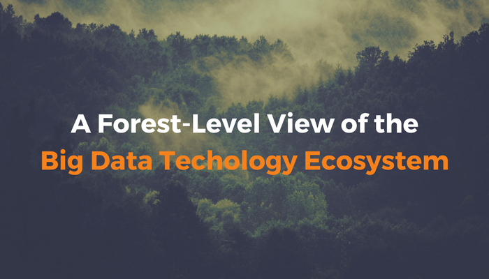 A Forest-Level View of the Big Data Ecosystem