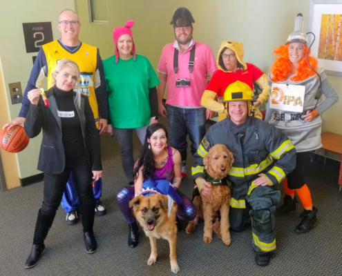 A photo of several DevelopIntelligence employees wearing Halloween costumes with their dogs.