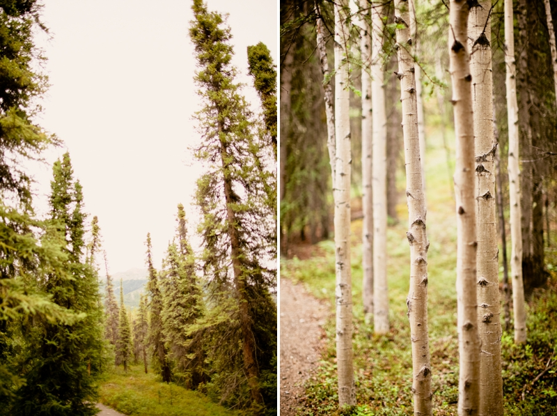 Alaska Mountaintop Engagement Session via TheELD.com