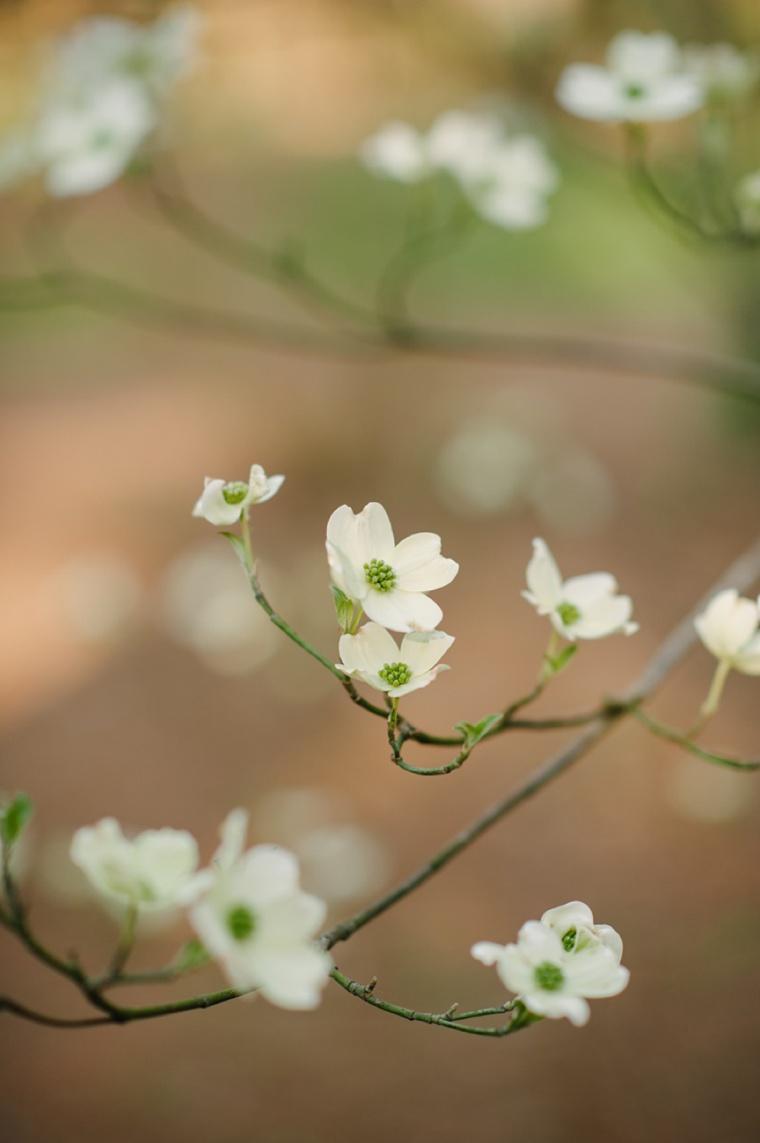 Soft Pink & Pale Blue Vintage Garden Wedding | Every Last Detail