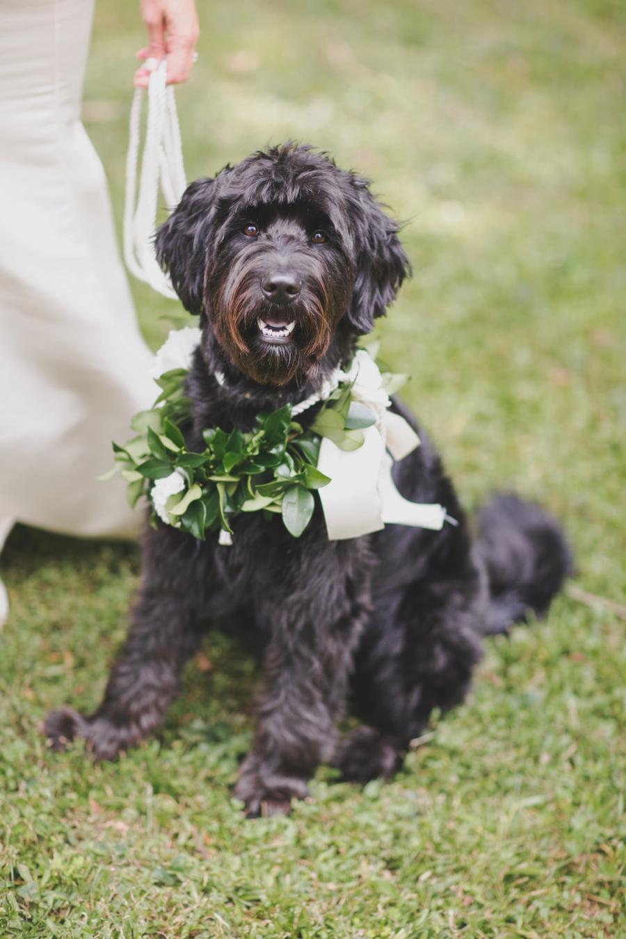 An Elegant Tallahassee Garden Wedding via TheELD.com