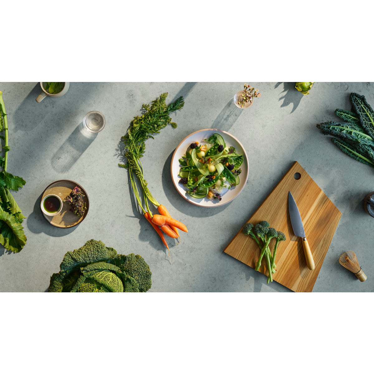 Better Living by Electrolux