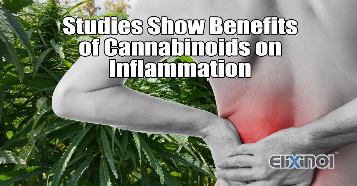 Hemp Oil for Inflammation - Studies Show Benefits of CBD as an Anti-Inflammatory