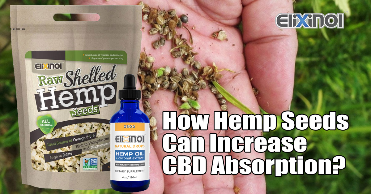 hemp seeds increase CBD absorption