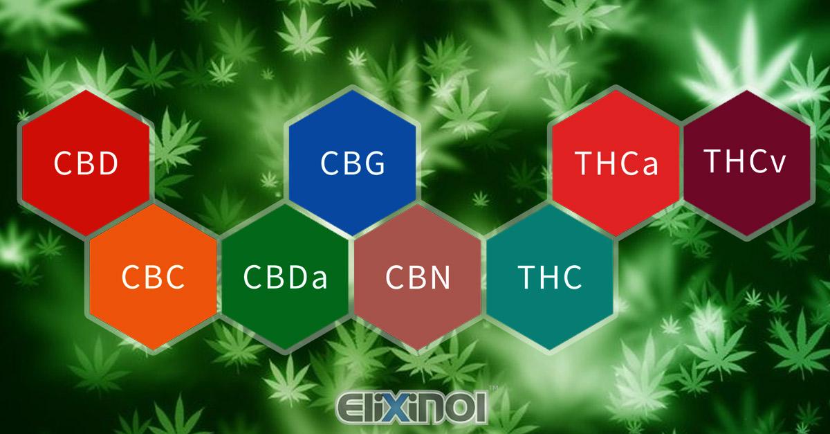 Lista dei cannabinoidi e terpeni di canapa