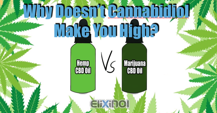 Why Doesn't Cannabidiol Make You High?