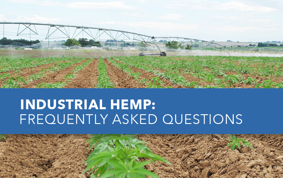 Industrial Hemp FAQ's