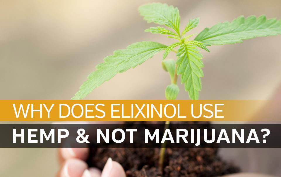 Why Does Elixinol Use Hemp And Not Marijuana?
