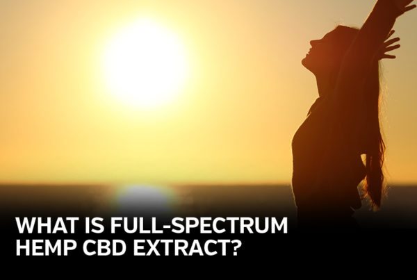 "woman stretching in the sunset captioned ""what is a full-spectrum hemp CBD extract?"""