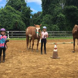 Summer Horse Camp 2019: Week 1
