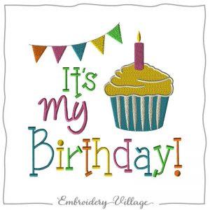 EV1161 Its my birthday