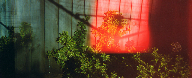 garden light leak
