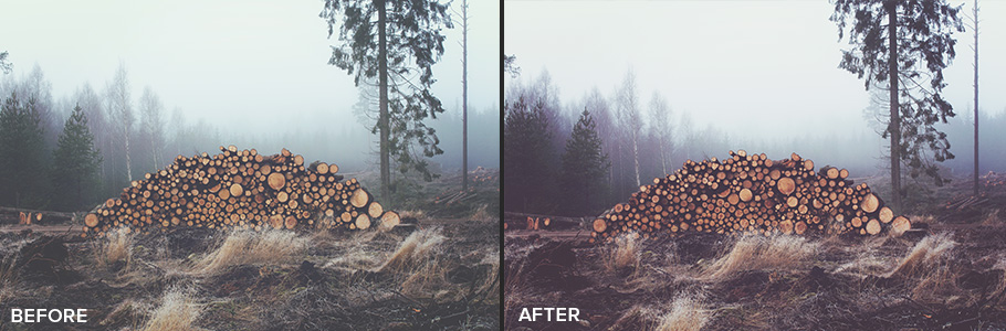 free photoshop actions 1 from FilterGrade