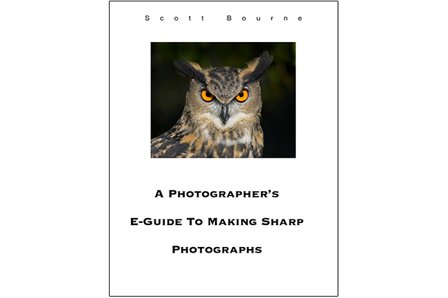 A Photographer's E-Guide To Making Sharp Photographs