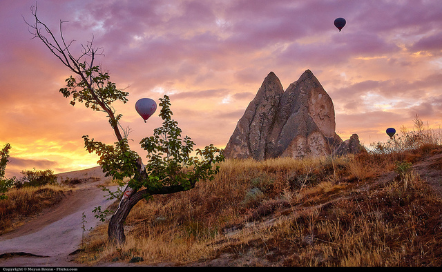 Mastering Landscape Photography 5
