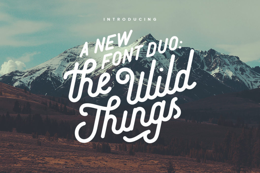 Wild Things Font Duo by Victor Barac