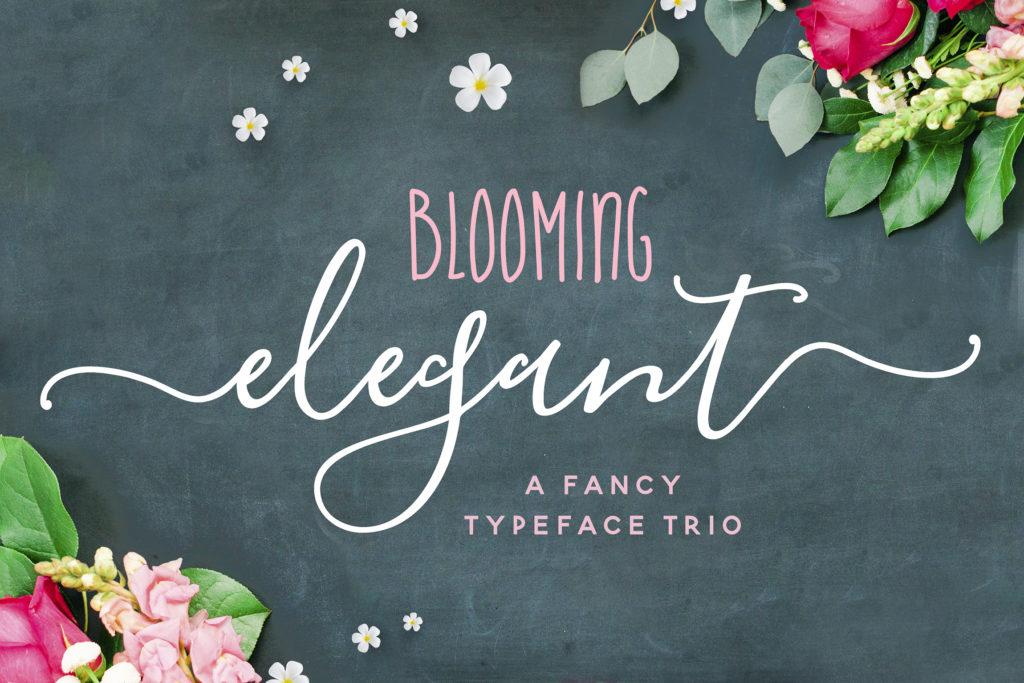Blooming Elegant Font Trio from Nicky Laatz
