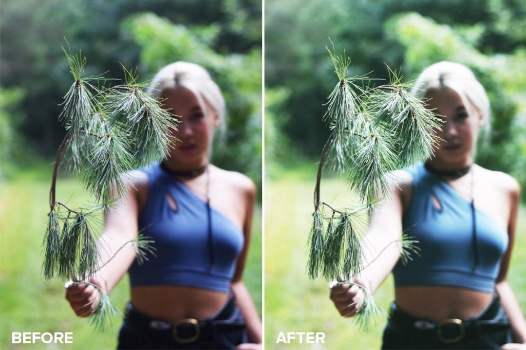 free portrait photoshop actions