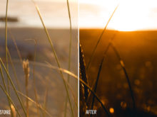 orange sunset lightroom presets for adobe by theo ox