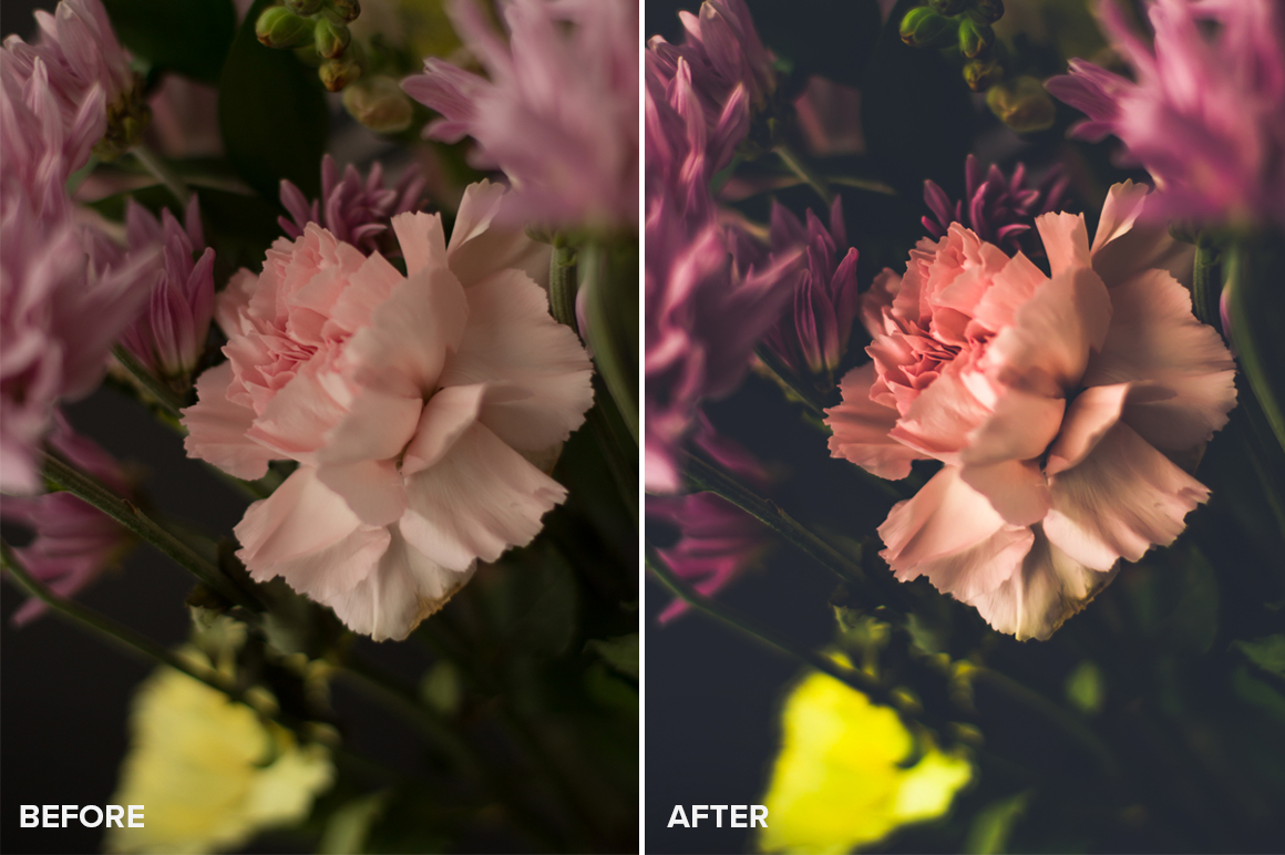 lightroom presets for still life photography