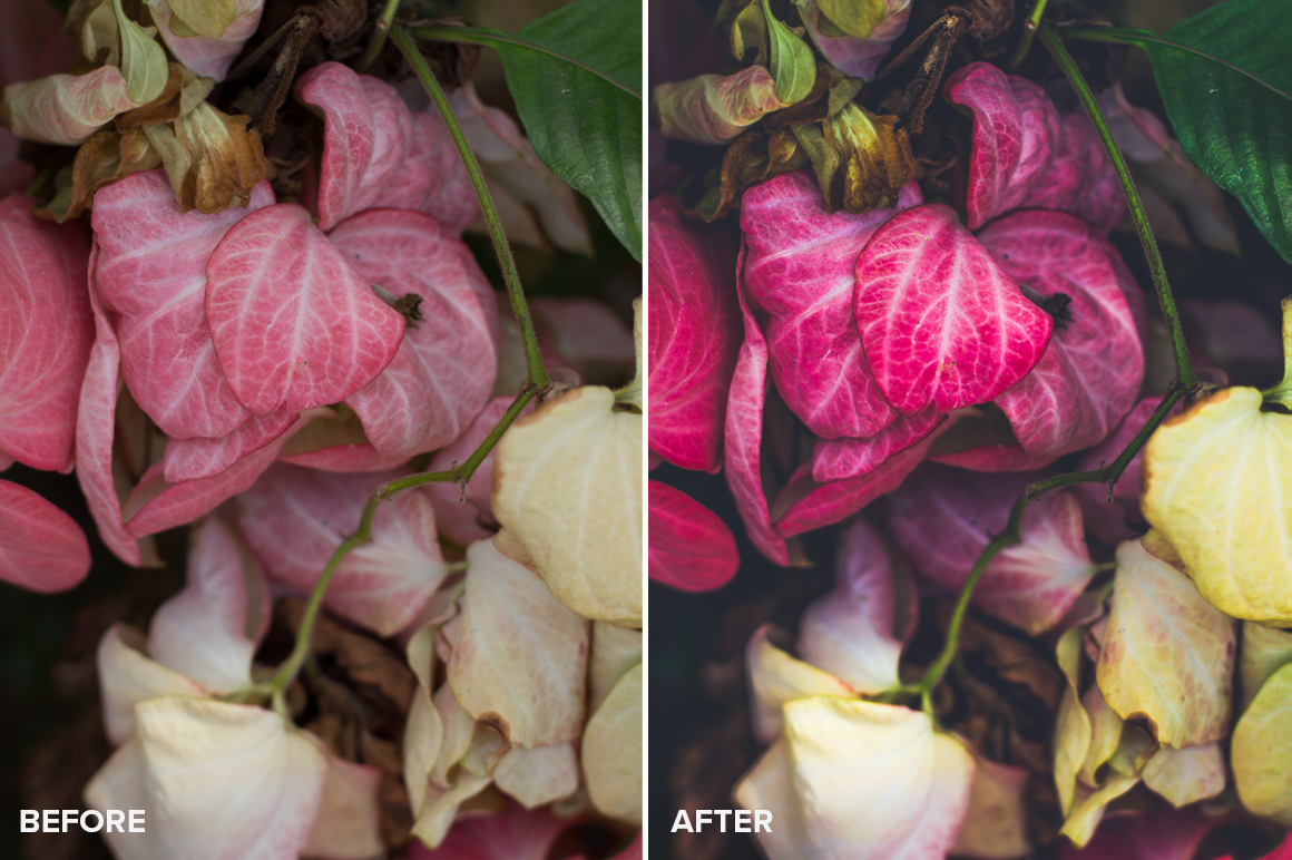 floral lightroom presets