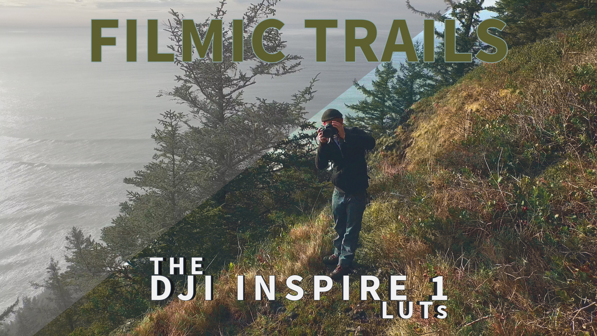 filmic video luts