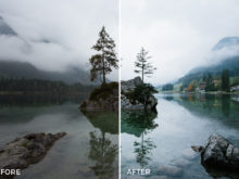 earthy lightroom presets by remy brand