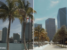 tropical 70s film luts for video