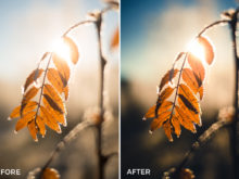 glorious light steffen fossbakk lightroom presets