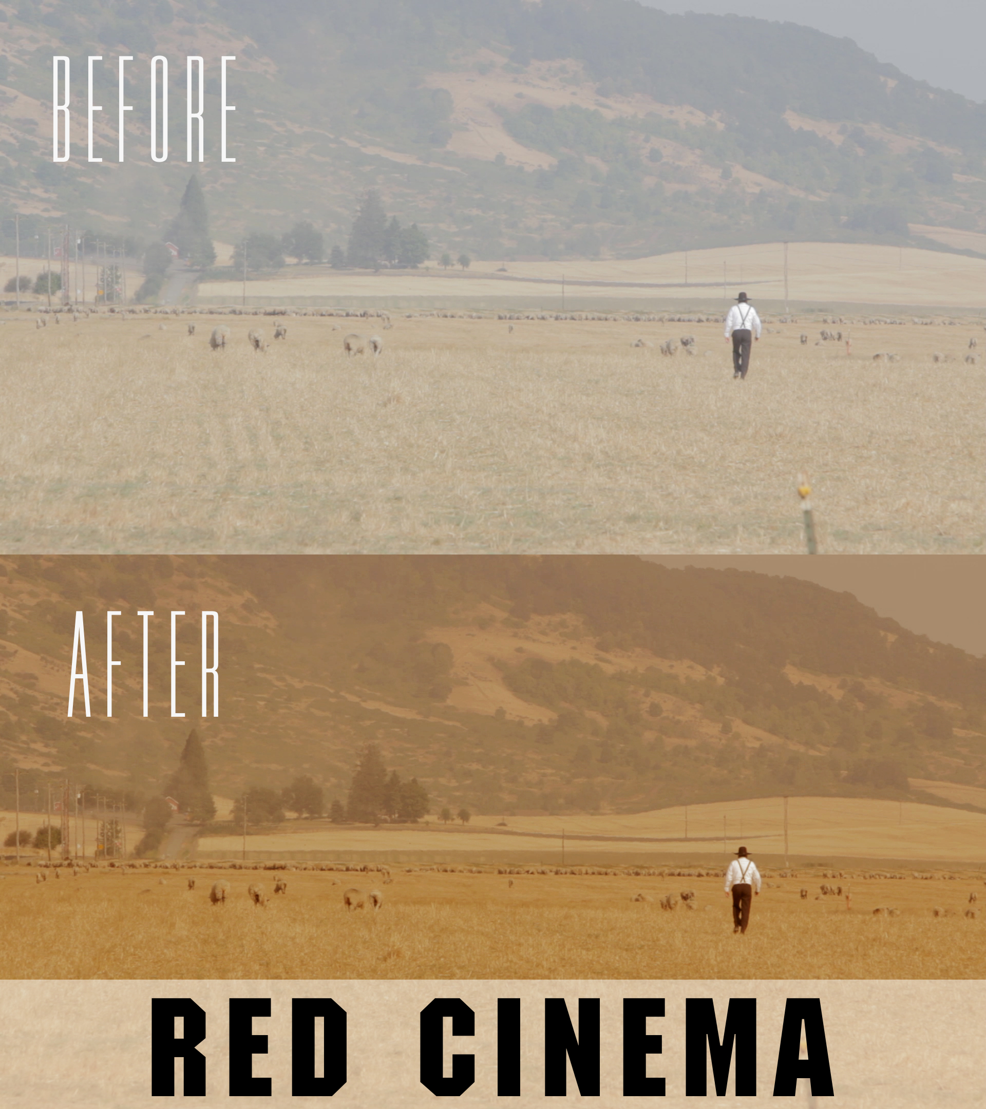 red cinema premiere pro presets from neumann films