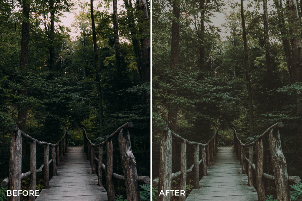 3 Filip Putak Lightroom Presets Preview - FilterGrade Marketplace