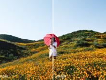 intense portrait luminar presets by filtergrade