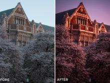4 Alexander Zhuk Spring & Sakura Lightroom Presets - FilterGrade Marketplace