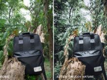 5 Moody Nature - Arvin Febry Lightroom Presets - Arvin Febry - FilterGrade Digital Marketplace