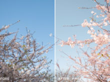 8 - Pink 2 - Corinth Suarez Lightroom Presets - FilterGrade Digital Marketplace