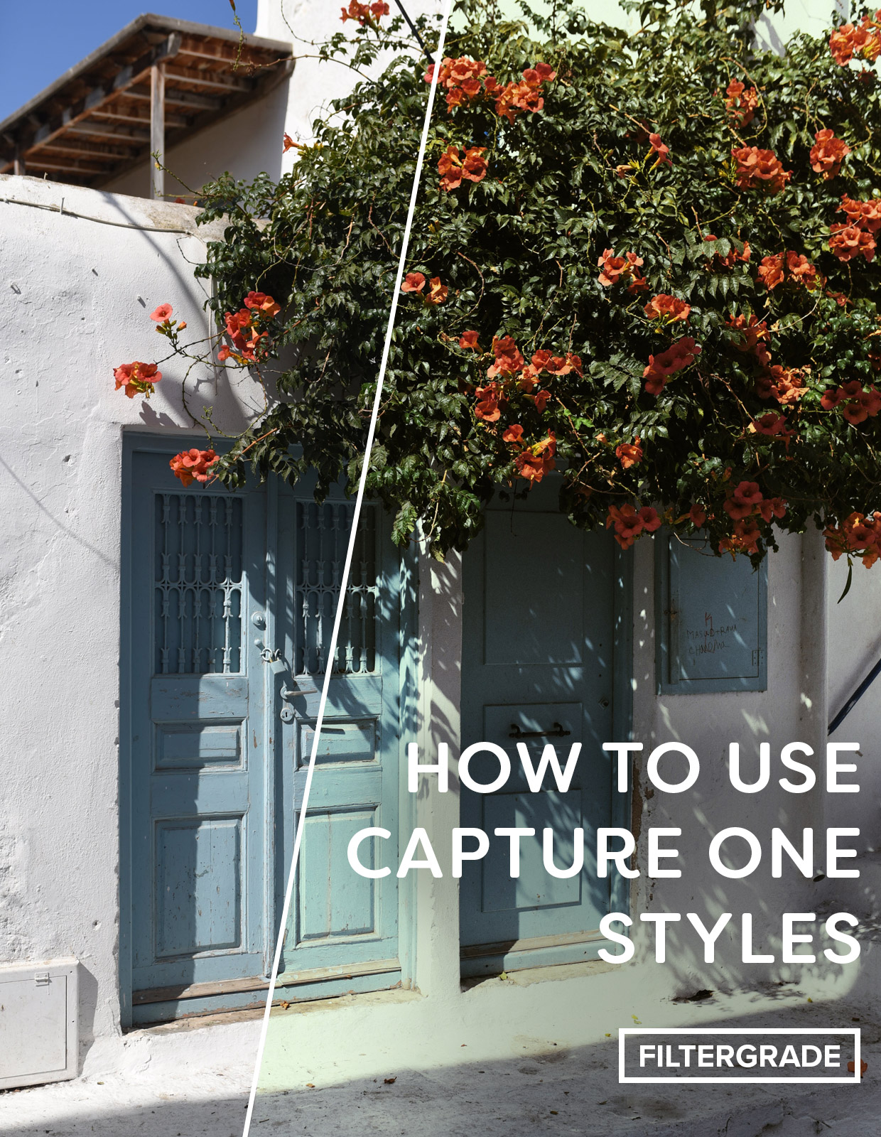 Helpful tips and tricks on how to use Capture One Styles and work more efficiently in Capture One Pro 10.