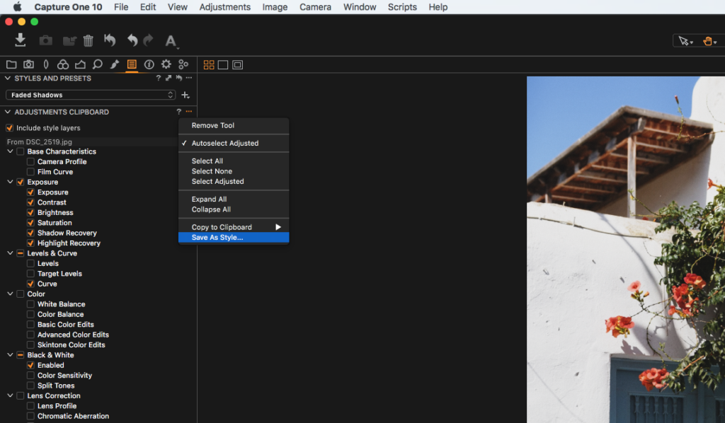 save capture one pro styles