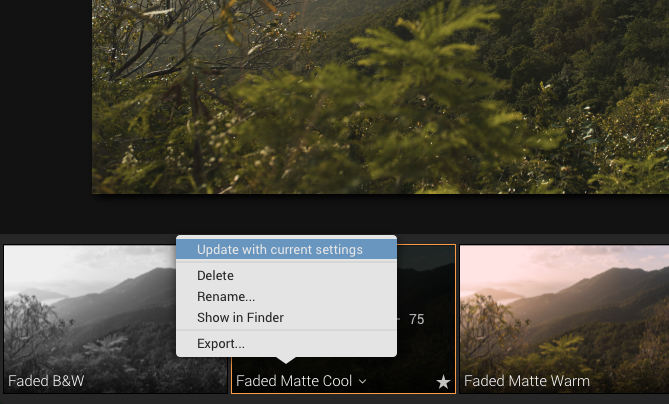 luminar presets update with current settings
