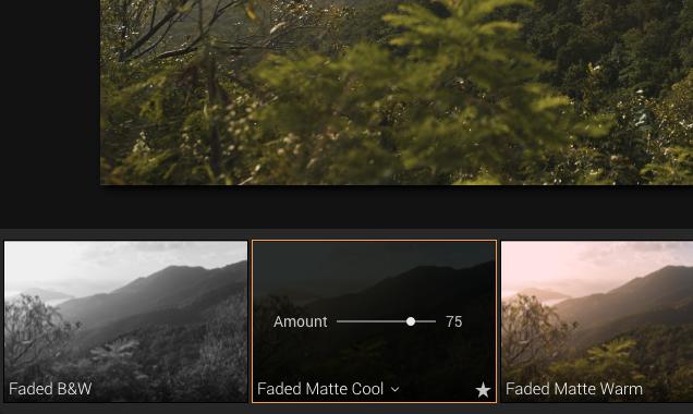 fade luminar preset effect for photo editing
