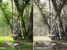 11 PYT-11 - Bankpyt Lightroom Presets - Piyatat Primtongtrakul Photography - FilterGrade Digital Marketplace