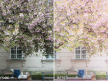 3 Simone Moelle Dreamy Wanderlust Lightroom Presets - FilterGrade Digital Marketplace