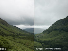 6 Natural Greens - Lukas De Groodt Lightroom Presets - FilterGrade Digital Marketplace