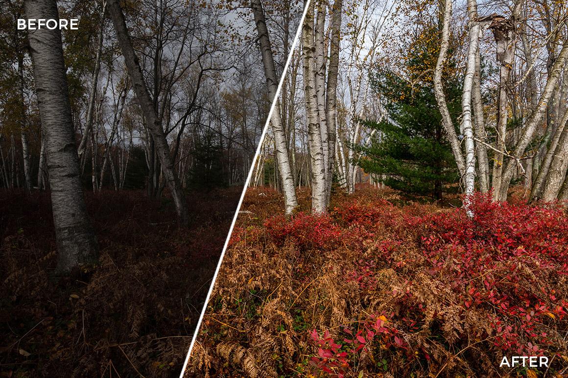 2 Landscape Legends lightroom Presets & Brushes - Marc Andre Photography - FilterGrade Digital Marketplace